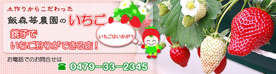 千葉県銚子市のいちご農園、完熟いちごの販売やいちご狩りが楽しめる観光農園です